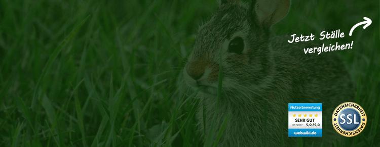 Kaninchenstallwelt Test Teaser