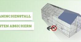 kaninchenstall-absichern
